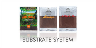 na_substrate