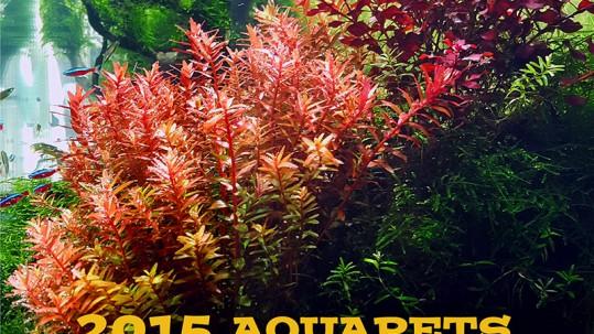 Poster 2015 Aquaptes Aquascaping Contest02